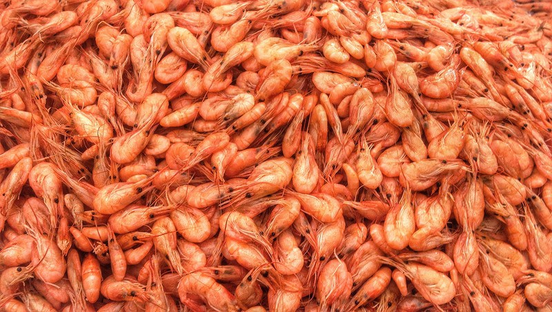 Браконьерство креветки на Кинбурнской косе «крышует» СБУ, полиция и нацпарк