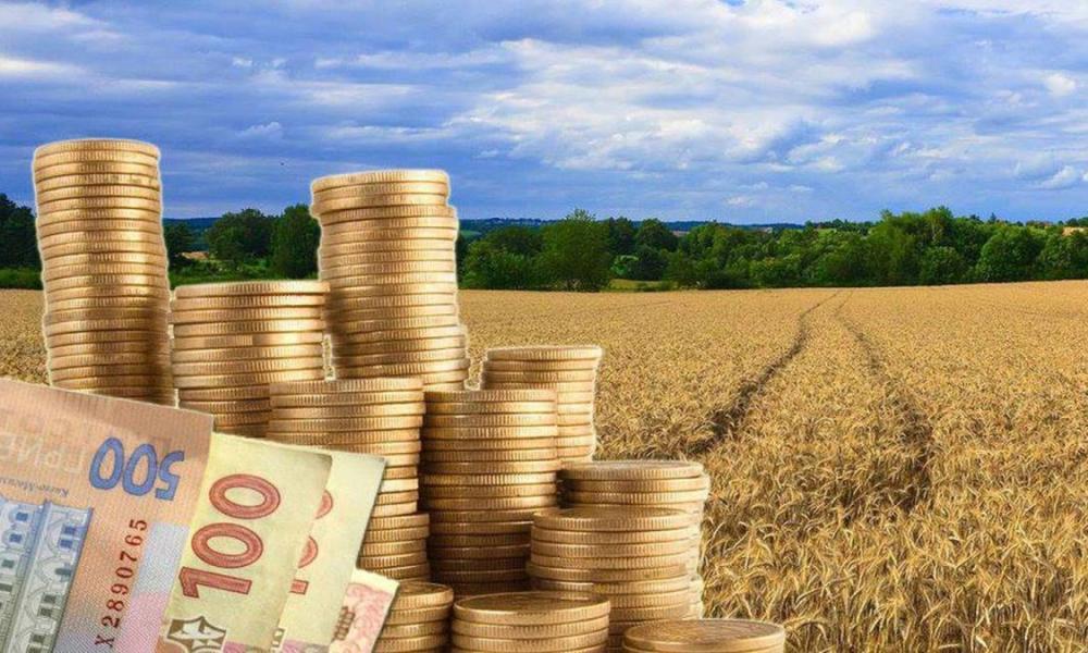 Из-за сына главы Снигиревской ОТГ бюджет громады недополучает налоги