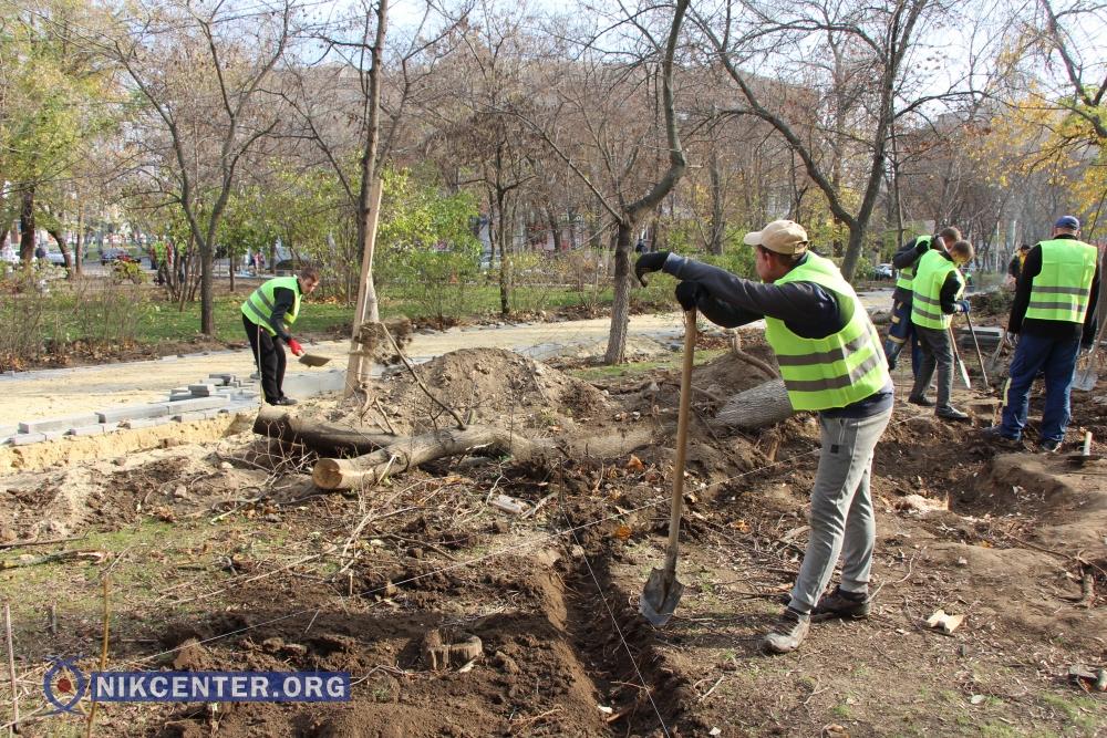 В Николаеве связанные между собой подрядчики разыграли тендер по благоустройству зеленой зоны на 5,7 миллионов гривен