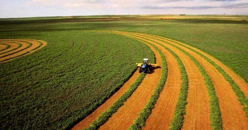 Названы самые крупные землевладельцы Украины