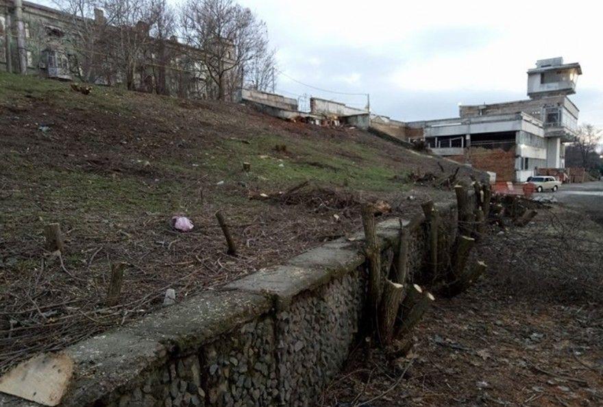 Экоинспекция насчитала более 70 тысяч грн. ущерба за спил 102 деревьев возле речвокзала