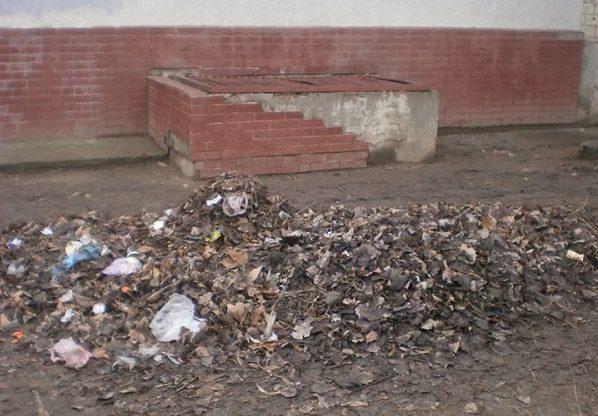 Живём в болоте и мусоре