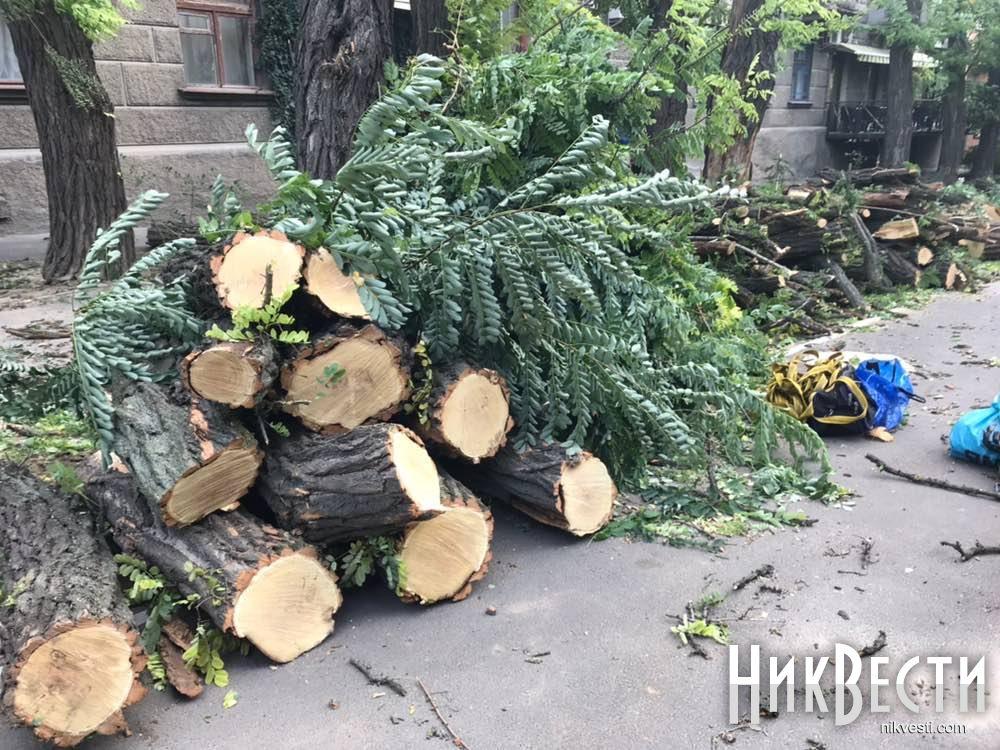 СБУ и полиция проводят обыски в Департаменте ЖКХ Николаева из-за коррупции на омоложении деревьев