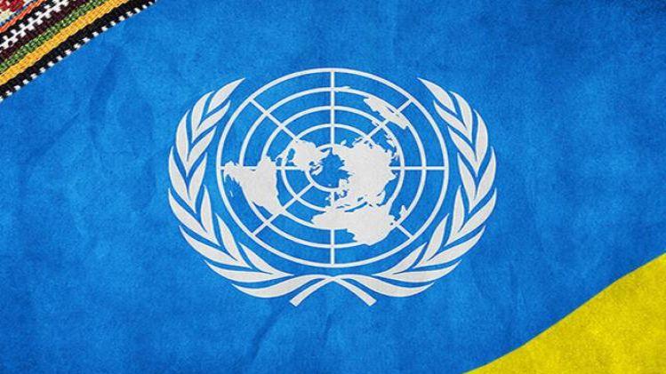 На изнасилование в Кагарлыке отреагировали в ООН
