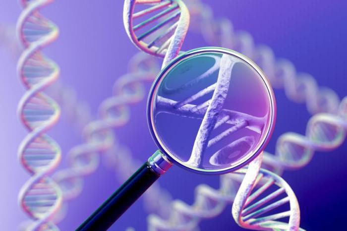 Ученые нашли «недостающее звено», которое привело к созданию жизни