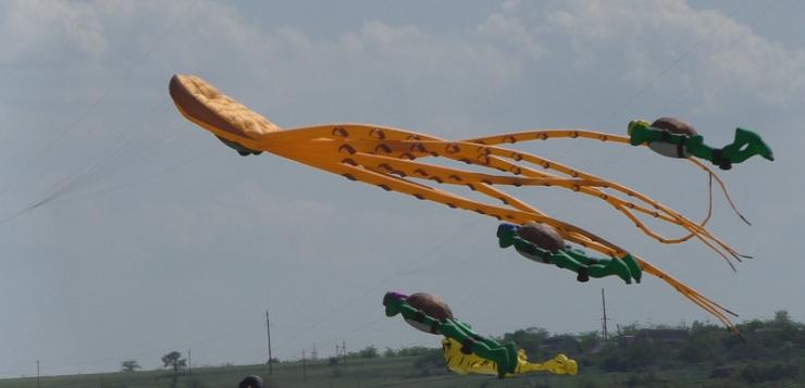 Небо над Ольшанською отг заполонили повітряні змії