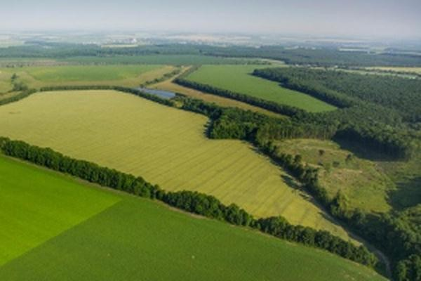 Николаевские участники АТО получат больше 10,5 тыс га земли