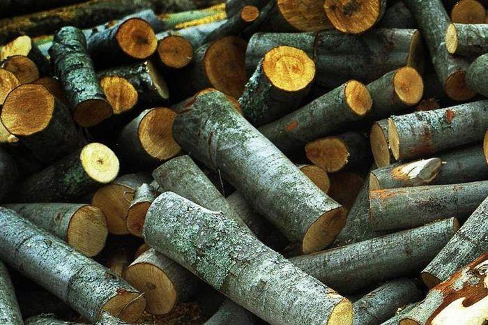Предложение по продаже дров в Николаеве за 2 года увеличилось в десятки раз