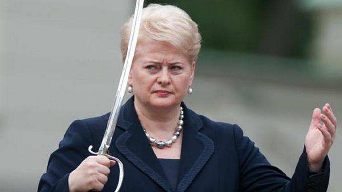 Президент Литвы закрыла границы для иностранцев-коррупционеров