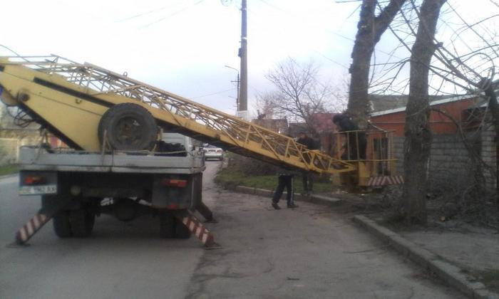 В Корабельном районе Николаева продолжаются работы по обрезке деревьев