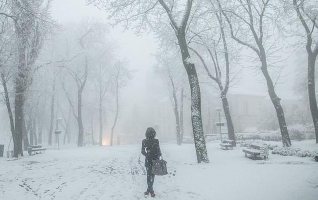На выходных в Украине будет тепло, вероятны небольшие осадки