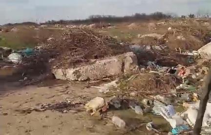Жители возмущены разрастающейся свалкой в Галицыново
