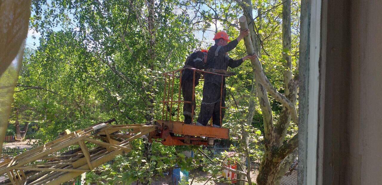 Кронирование деревьев в одном из детских садов Корабельного района помогли произвести Администрация Корабельного района и депутат Ентин