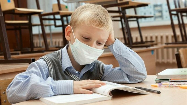 «Карантинна освіта»: чи підуть діти до школи 1-го вересня