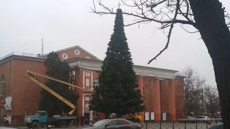 Установлена главная новогодняя елка в Корабельном районе