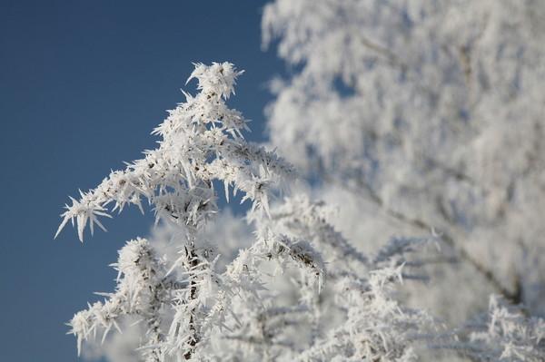 По Украине ударят сильные морозы и снегопады