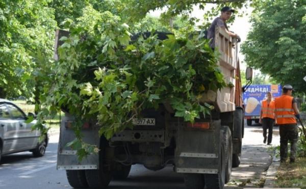 Департамент ЖКХ без тендера отдаст Николаевзленхозу 3,2 млн за уборку газонов и полив травы