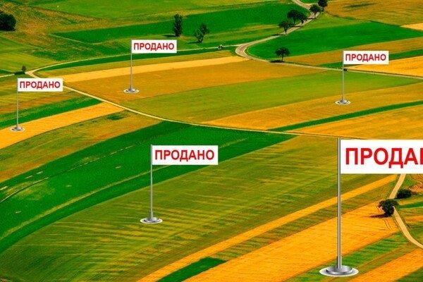 Карантин и продажа земли: что думают николаевские депутаты о скандальном решении Рады