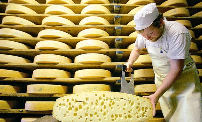 Дірка від сиру: 100% польських сирів в Україні є фальсифікатом