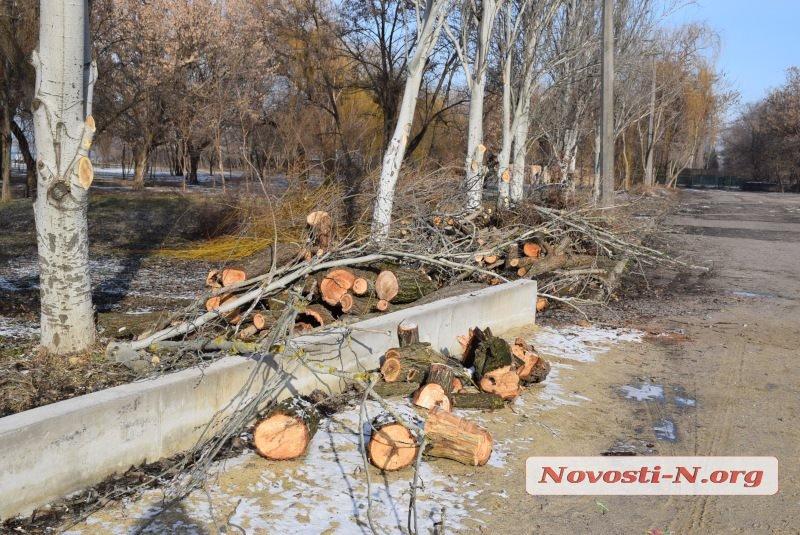 В Николаеве в сквере на речвокзале вырубили деревья