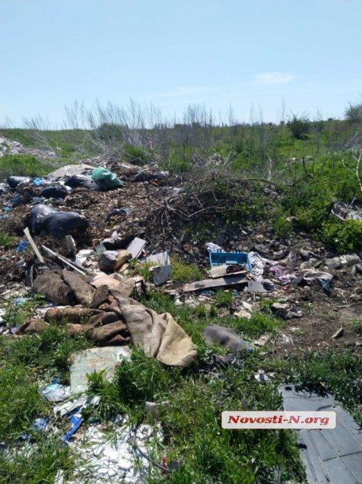 В Николаеве поле у объездной дороги превратили в свалку
