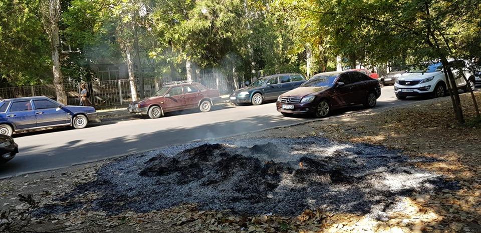 В Николаеве под окнами детской областной больницы горят кучи опавшей листвы