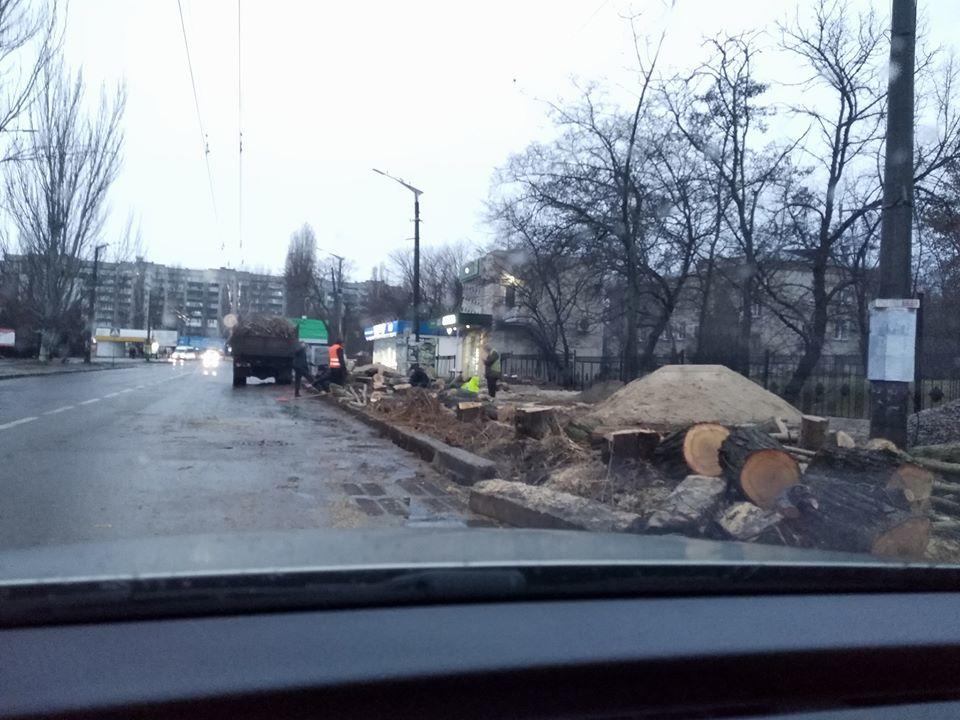 В Николаеве возле госпиталя срубили тополя — жители заподозрили, что из-за нового тротуара