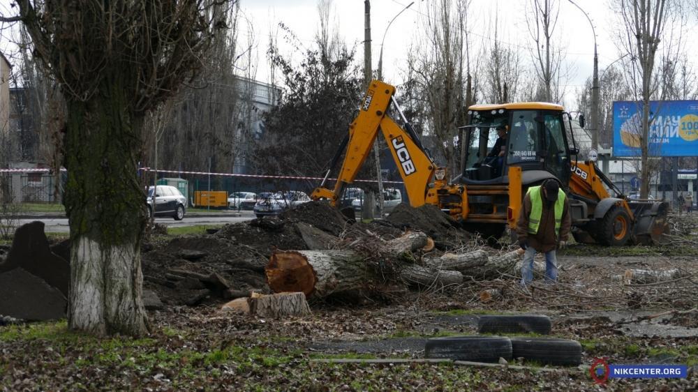 В Николаеве во время реконструкции зеленой зоны подрядчик уничтожит 44 дерева