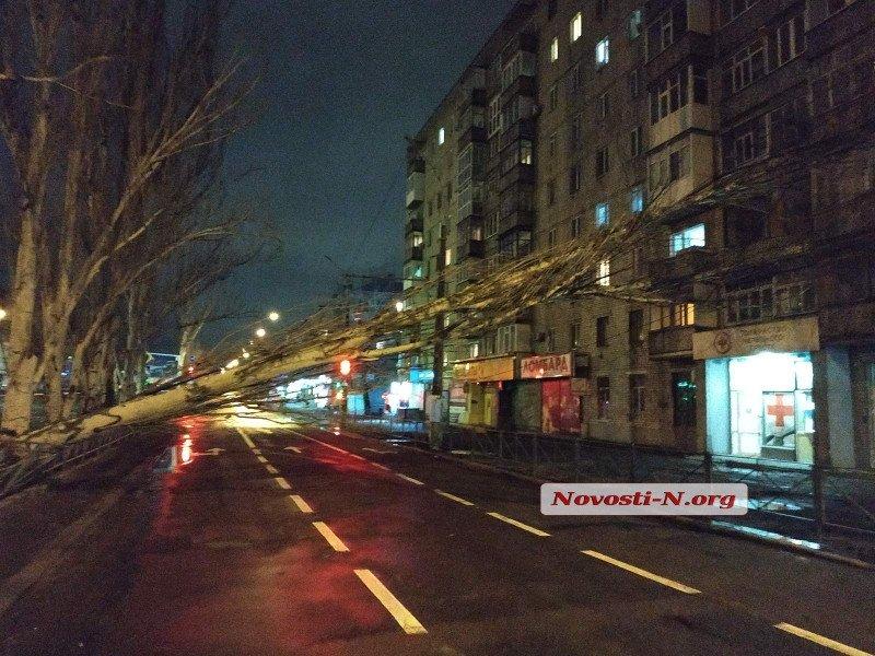 В Николаеве ураганный ветер массово валит деревья и ломает светофоры