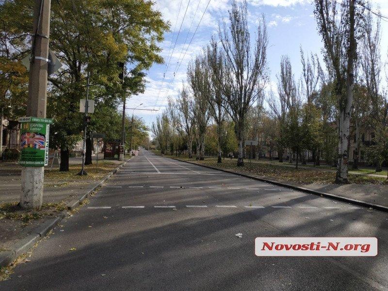 В Николаеве по проспекту Центральному снесут тополя от Садовой до Херсонского шоссе