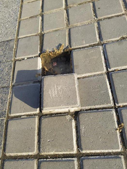 На Серой площади в Николаеве выпадает плитка