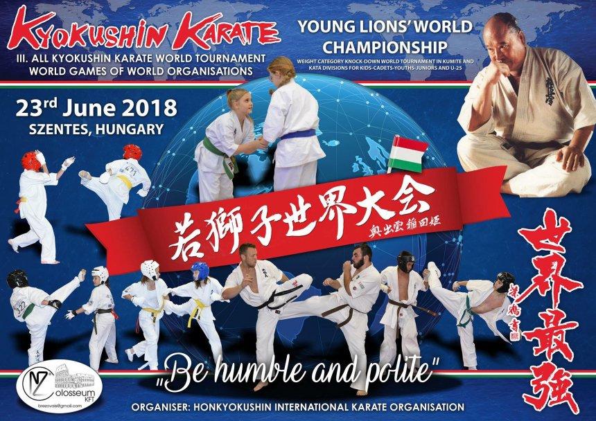 Юный николаевец стал чемпионом мира по киокушин каратэ
