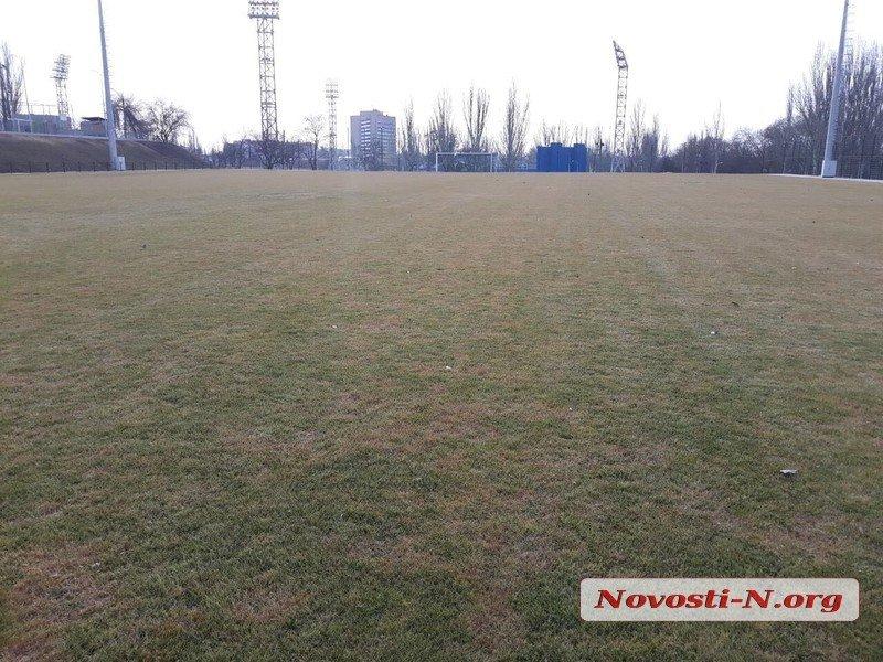 В Николаеве пожелтел вновь уложенный натуральный газон тренировочного поля